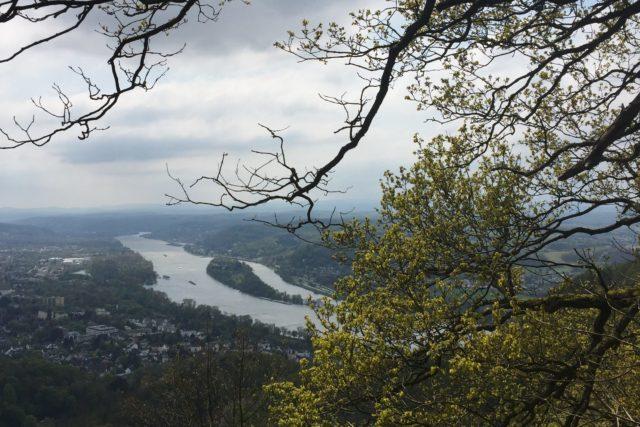 Ausblick vom Siebengebirge auf den Rhein