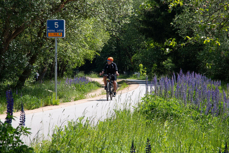 Auf der Radroute Vennquerweg, Eifel